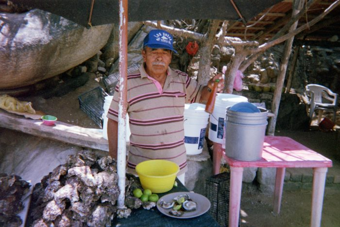 oysters fresh mexico puerto escondido puerto angelito